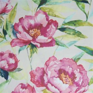 Earnley peony small product detail