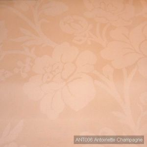 Ant006 antoinette champagne product listing