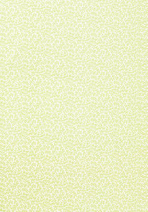 Thibaut wallpaper t4187 medium product listing